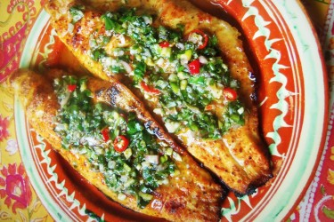Grilled Catfish with Fresh Herb Chimichurri, photo by Sonia Mendez Garcia