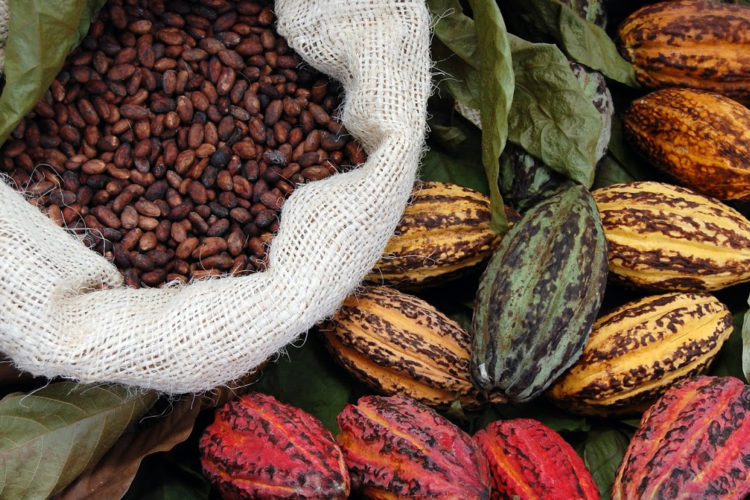 Power Up: Three Energy-Boosting Foods for Fierce Latinas, photo by hkadmin