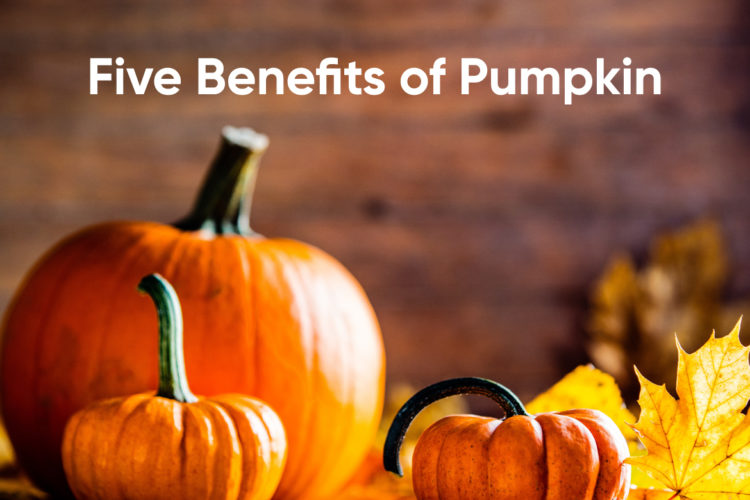 Five Benefits of Pumpkin, photo by hkeditor